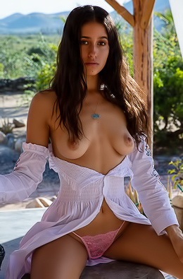 Naked Brunette Megan Blake Charming