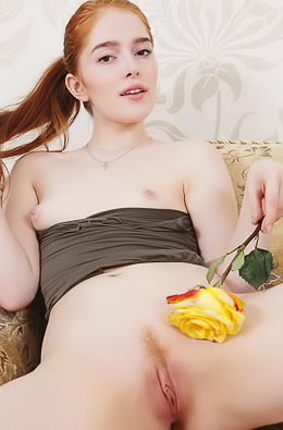 Jia Lissa Yellow Rose